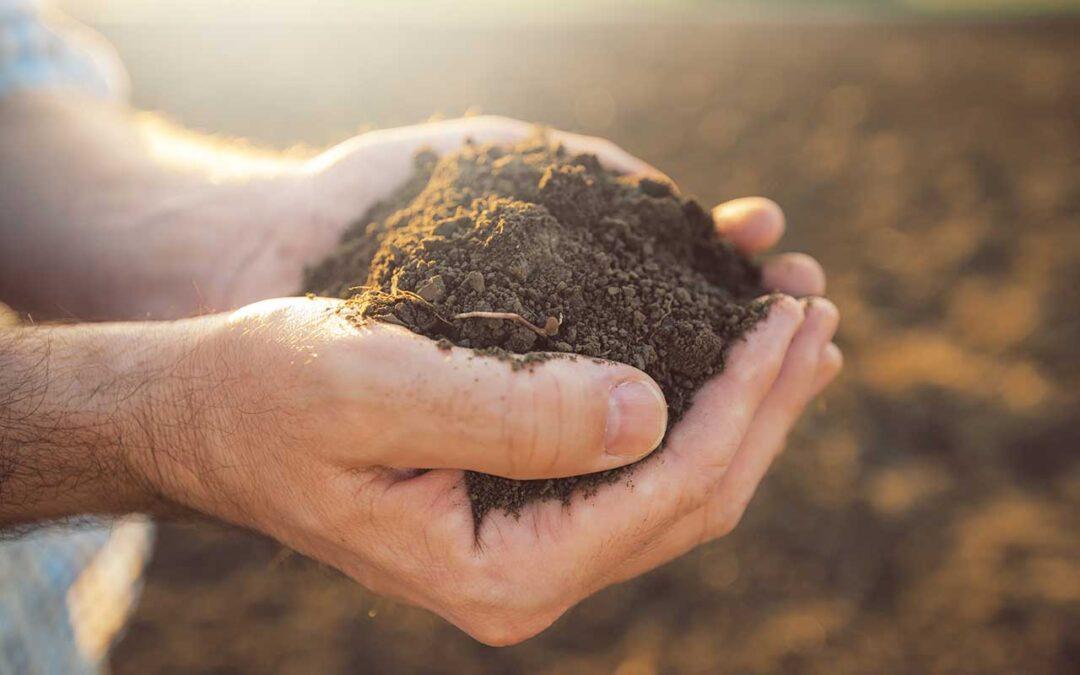 L'achat d'un terrain : l'importance de l'évaluation environnementale